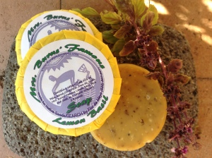 Look what I made with Mrs. Burns' Lemon Basil--a luscious scented herbal soap! (photo by Jan Willkom)