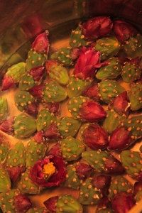 red cholla buds de-spined ready for cooking (MABurgess photo)