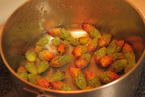yellow staghorn buds in the cook pot (MABurgess photo)