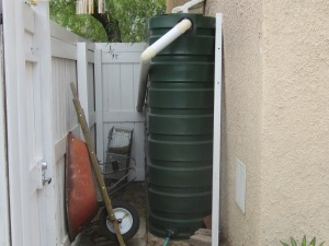 Our biggest tank drains water from roof of guest house and provided water for my winter vegetable garden.