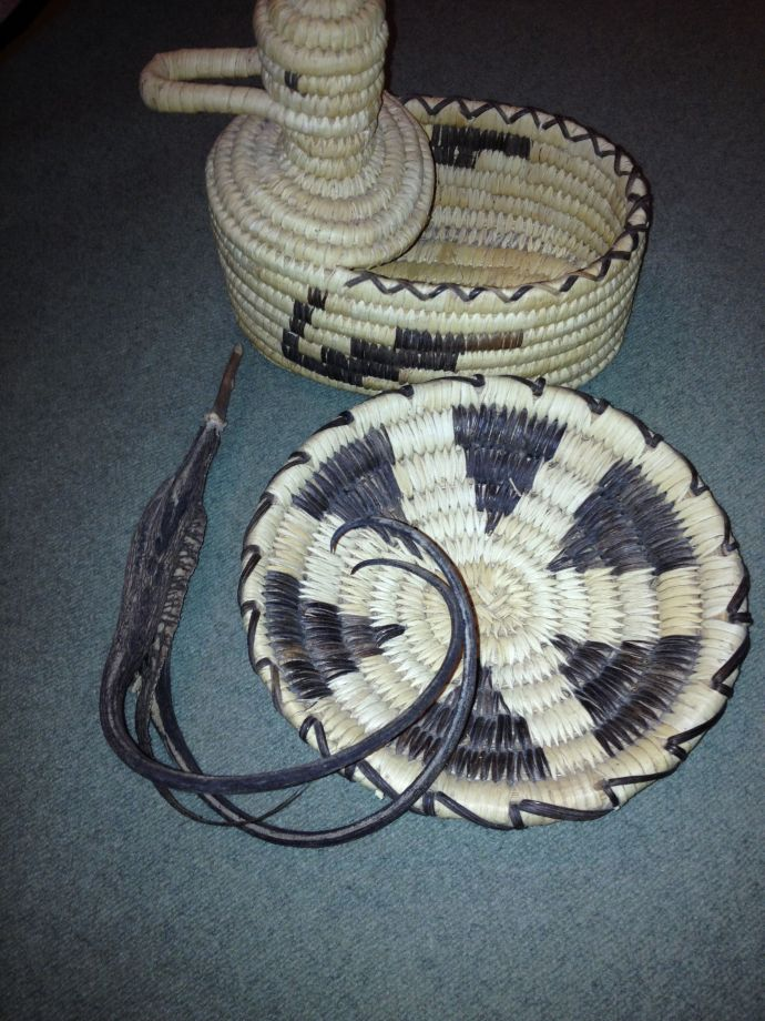 Tohono O'odham coiled basket by Juanita Ahil with domestic long-clawed i:hug (MABurgess photo)