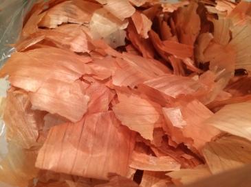 onion skin IMG_2348