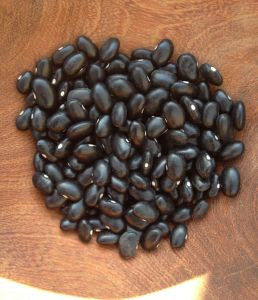 """""""Aztec Black Bean"""" or """"Black Turtle"""" is the traditional bean of the Nahuatl or central Mexico."""
