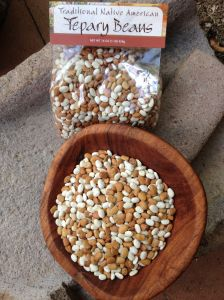 The most nutritious and rich-tasting of all beans--our native Tepary Bean!  --domesticated by early Desert People of the Southwest