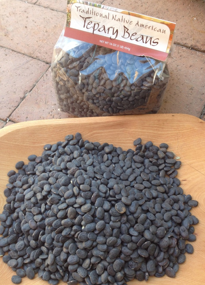 Native Black Tepary Beans & Flor de Mayo 1-lb pkg
