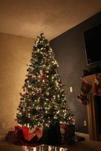christmas tree 685920_1280