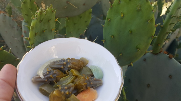 Pickles! Cholla buds and nopalitos en escabeche.