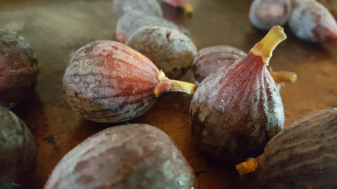 2-fresh-whole-figs