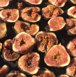 Fresh Mission figs cut ready for drying in the solar oven