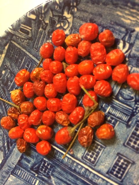 Dried chiltepines for the relish--They make a great snack, great flavoring for Tom's Mix SW Heirloom Beans, and super in any salsa