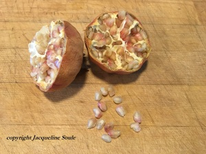 pomegranate-soule-southwest