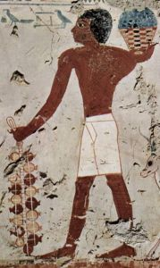 punica-granatum-egyptian-art-02