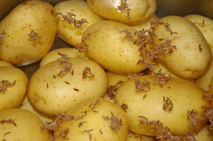 potatoes with caraway pixa 1638520_1280