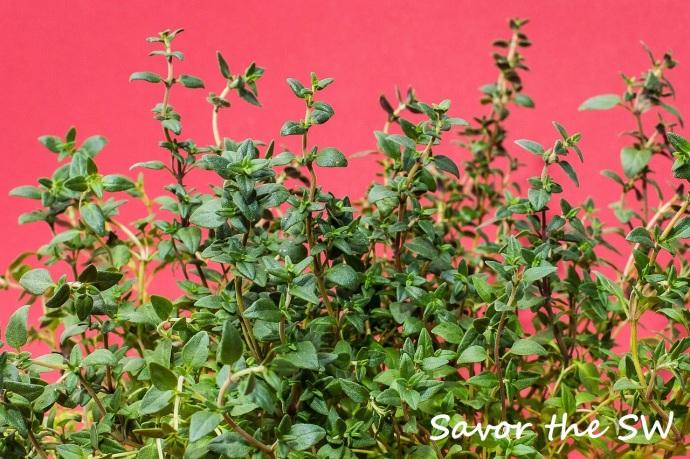 thyme 1781005_1280 savor