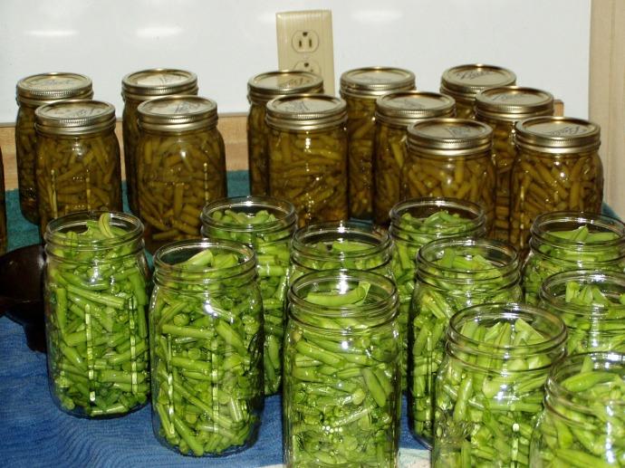 green beans 631157_1280
