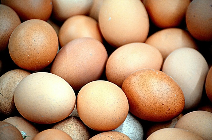 chicken eggs 316412_1280